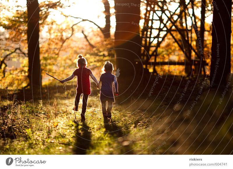 just the way you are iv Mensch feminin Kind Mädchen Geschwister Schwester Kindheit 2 3-8 Jahre Umwelt Natur Herbst Schönes Wetter Wald entdecken festhalten