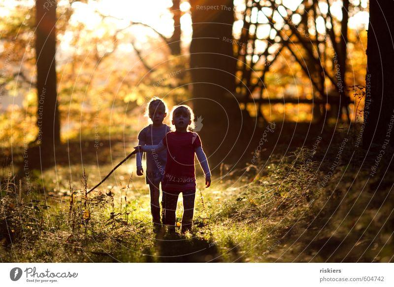 just the way you are vii Mensch feminin Kind Mädchen Geschwister Schwester Kindheit 2 3-8 Jahre Umwelt Natur Herbst Schönes Wetter Wald entdecken leuchten Blick