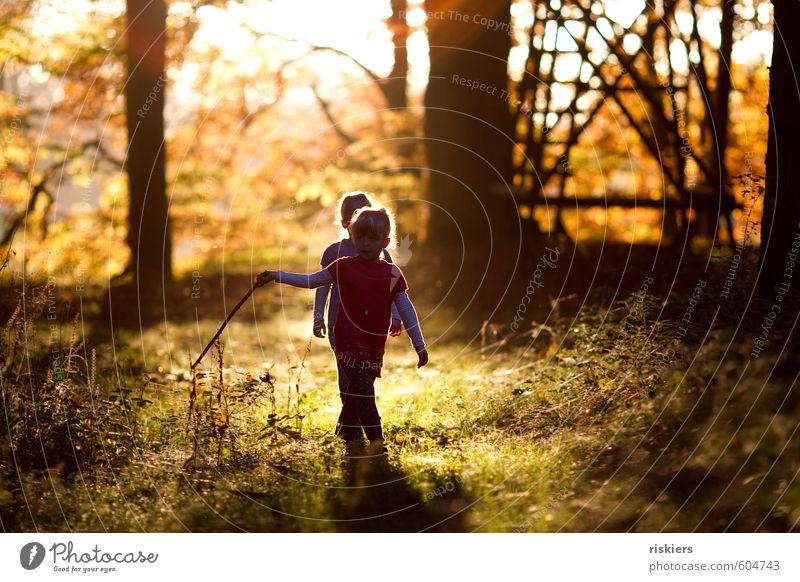 just the way you are vi Mensch feminin Kind Mädchen Geschwister Schwester Kindheit 2 3-8 Jahre Umwelt Natur Herbst Schönes Wetter Wald entdecken leuchten