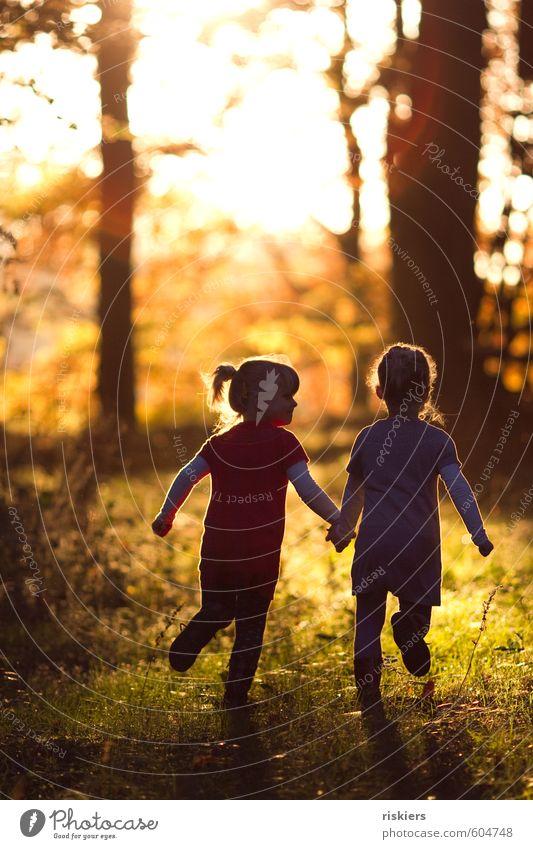 just the way you are iii Mensch feminin Mädchen Geschwister Schwester Kindheit 2 3-8 Jahre Umwelt Natur Herbst Schönes Wetter Wald entdecken festhalten rennen