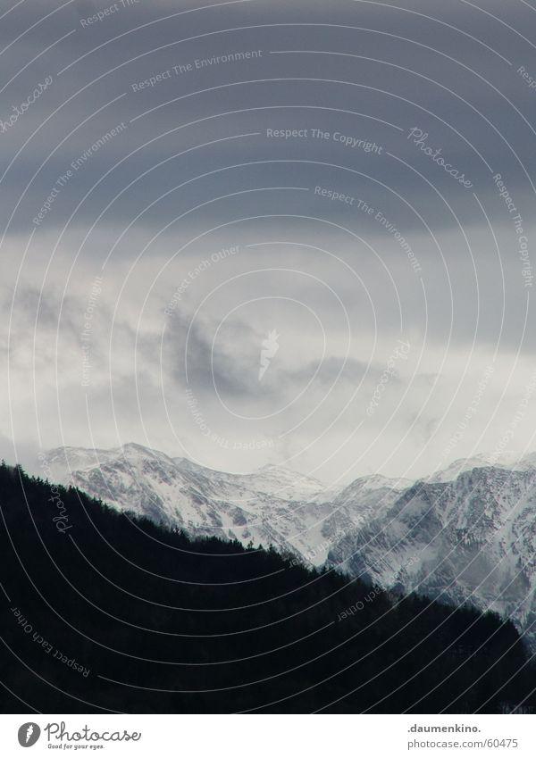 stiller Beobachter Wald Licht Wolken grau Baum Berghang vertikal Ewigkeit monumental massiv Macht Berge u. Gebirge Schatten Himmel Baumkrone Spitze Schnee Stein