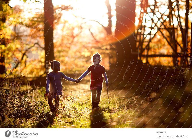 just the way you are <3 Mensch Kind Natur Landschaft Mädchen Wald Umwelt feminin Herbst Glück natürlich Stimmung träumen Zusammensein Kindheit leuchten