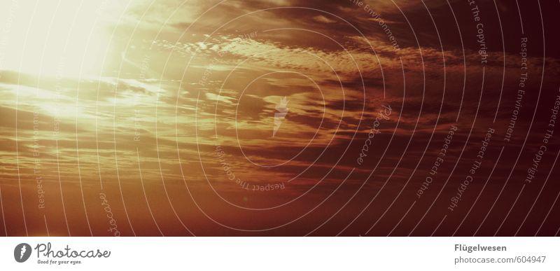 Himmelsstürmer Ferien & Urlaub & Reisen Tourismus Ausflug Abenteuer Ferne Freiheit Erde nur Himmel Wolkenloser Himmel Nachthimmel Stern Horizont Sonne