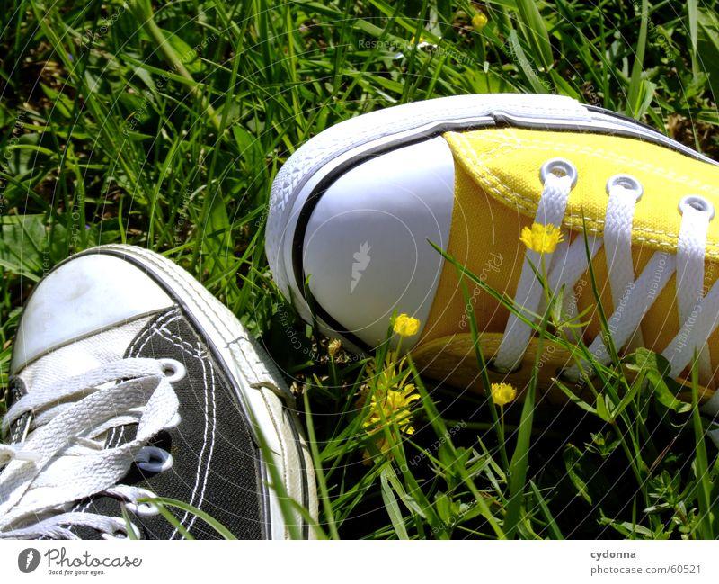 I love Chucks! Schuhe kultig Stil Schuhbänder Frühling springen Wiese Gras Blume Blüte Bekleidung Detailaufnahme Sonne