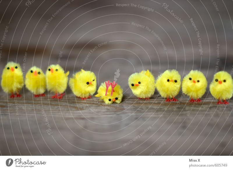 Besser Rotwein als.... Dekoration & Verzierung Ostern Vogel Tiergruppe Tierjunges lustig verrückt gelb Gefühle Stimmung Alkoholsucht Feindseligkeit Unfall