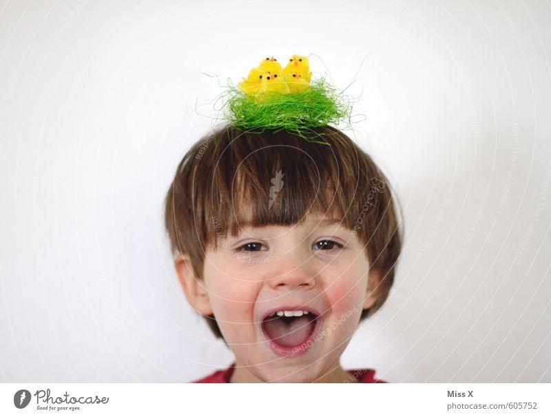 Ab zum Friseur Mensch Kind Freude Tier Mädchen Tierjunges Gefühle lustig Junge lachen Haare & Frisuren Stimmung Vogel Kopf Kindheit Fröhlichkeit
