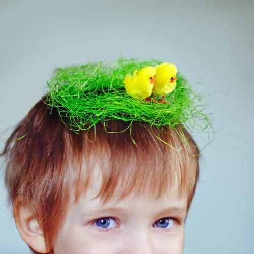 Nestbau Ostern Mensch Kind Kopf Haare & Frisuren 1 1-3 Jahre Kleinkind 3-8 Jahre Kindheit blond Vogel Tiergruppe Tierjunges lustig niedlich verrückt Horst