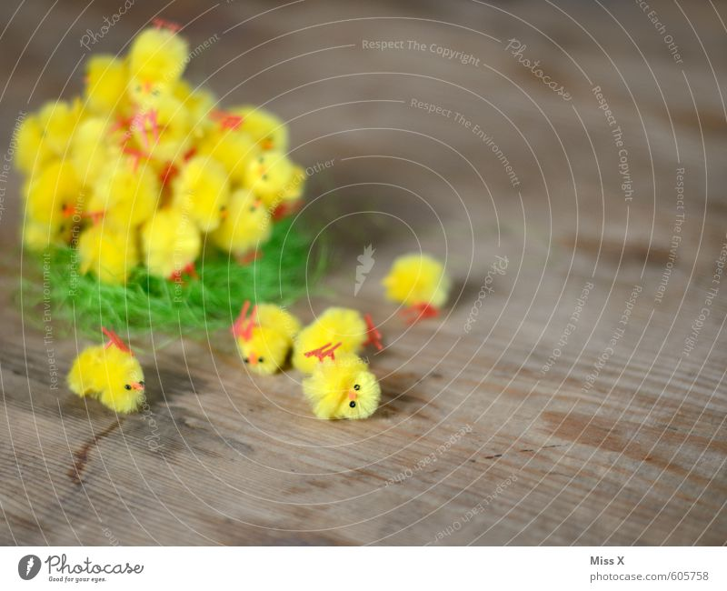 Umgefallen Dekoration & Verzierung Ostern Tier Vogel Tiergruppe Tierjunges lustig niedlich gelb Osternest Osterküken Küken Nest Haufen viele Farbfoto mehrfarbig