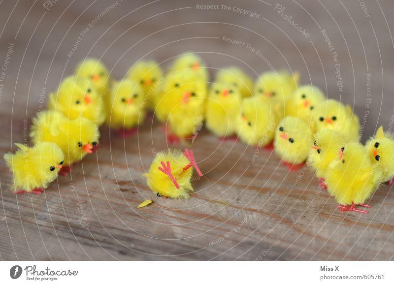 Schaulustige Krankheit Rauschmittel Alkohol Menschenmenge Fußgänger Verkehrsunfall Vogel Tiergruppe liegen Neugier gelb Gefühle Stimmung Trauer Tod Angst