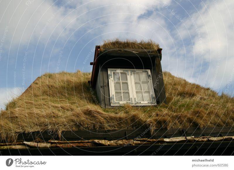 Gras auf dem Dach Himmel blau Wolken Fenster Halm Skandinavien Dachrinne Dänemark Regenrinne Føroyar Natursteinhaus Holzfenster Tórshavn