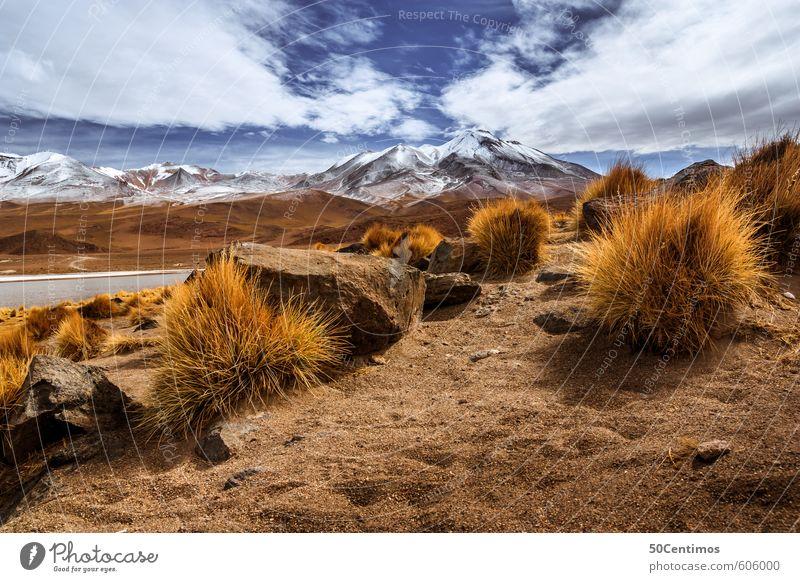 Wüsten Berglandschaft in den Anden Bolivias Natur Ferien & Urlaub & Reisen Pflanze Landschaft ruhig Wolken Ferne Umwelt Berge u. Gebirge Schnee Freiheit See Angst Sträucher Klima Tourismus