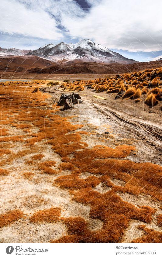 Gebirgsstrasse in den Anden Ferien & Urlaub & Reisen Pflanze Landschaft ruhig Ferne Berge u. Gebirge Freiheit Wetter Tourismus wandern Klima Ausflug