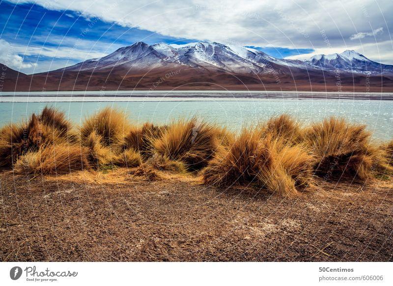 Gebirgssee mit Wüsten Berglandschaft in den Anden Bolivias Himmel Natur Ferien & Urlaub & Reisen Pflanze ruhig Wolken Ferne Umwelt Berge u. Gebirge Freiheit See