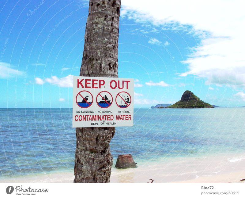 Baden verboten.... Himmel Sonne Meer blau Strand Ferien & Urlaub & Reisen Wolken Sand Küste Schilder & Markierungen Insel USA Freizeit & Hobby Schwimmen & Baden