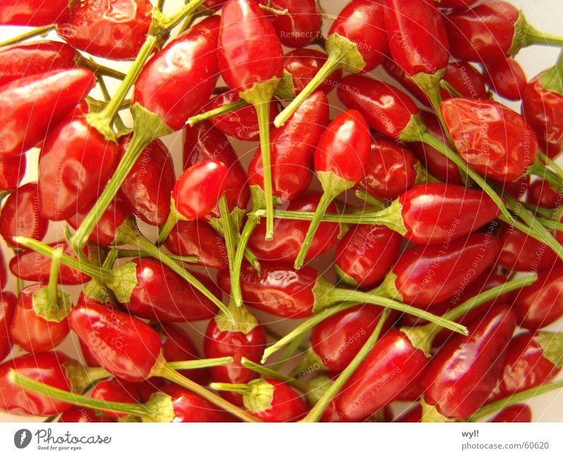 Schaaaaaarf Peperoni Kräuter & Gewürze grün Schote Capsaicin getrocknet Chili chilies Scharfer Geschmack trot Brand Pfeffer Mexiko