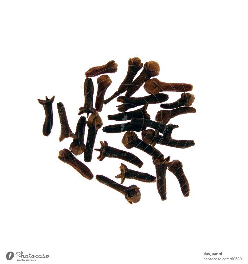 rundung #4 weiß schwarz Ernährung Lampe dunkel hell braun Lifestyle Kreis modern Kochen & Garen & Backen Küche Scharfer Geschmack Kräuter & Gewürze Reihe
