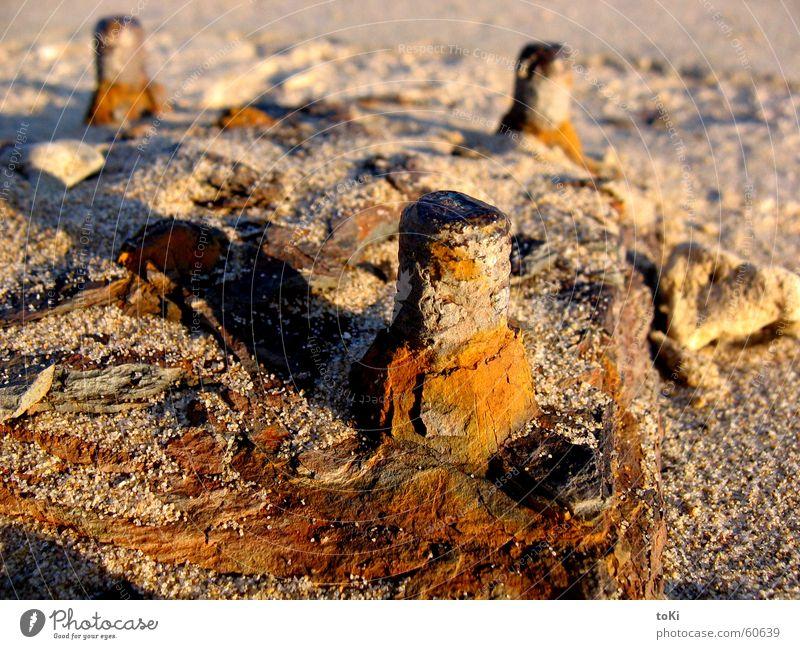 baluardo Sommer Strand Einsamkeit Herbst Sand Erde Romantik Schwimmbad Italien Vergangenheit Rost Erinnerung Schraube beige Plattform Fundament