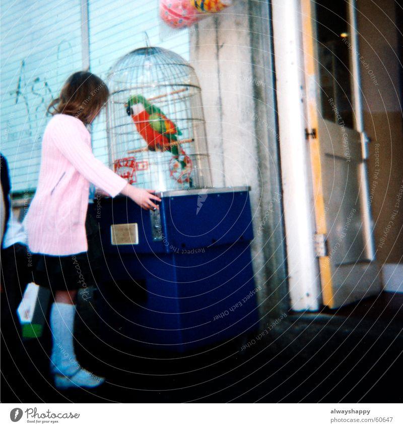 sie nennen ihn den birdy Mädchen Spielen rosa analog trashig schäbig Mittelformat Papageienvogel Glücksspiel Nepp Strickjacke Spielautomat