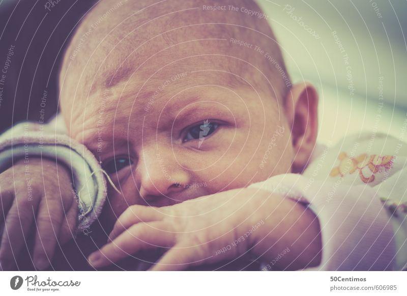 Baby auf Mutters Schulter Mensch Eltern Erwachsene Kindheit Kopf 1 0-12 Monate genießen Blick Freundlichkeit Glück Gefühle Zufriedenheit Lebensfreude Vorsicht