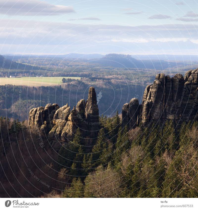 Blick von den Schrammsteinen zum Königstein Umwelt Natur Landschaft Feld Wald Hügel Felsen Berge u. Gebirge wandern frei hoch Sächsische Schweiz