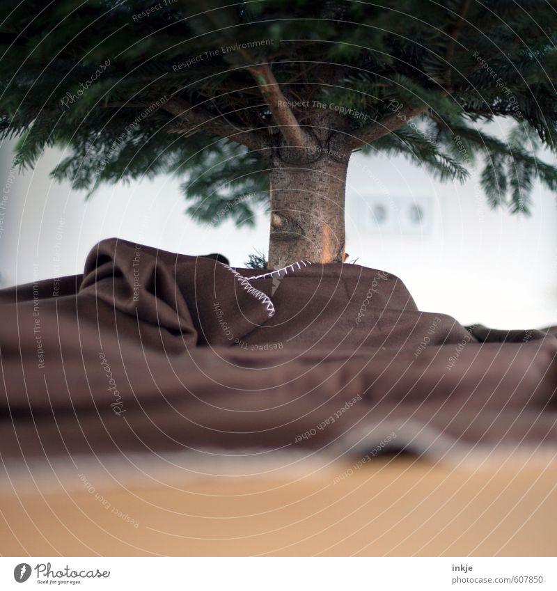 es weihnachtet Weihnachten & Advent Gefühle Feste & Feiern Stimmung braun Freizeit & Hobby Häusliches Leben geheimnisvoll Baumstamm unten Weihnachtsbaum Tradition Tanne Decke Vorfreude