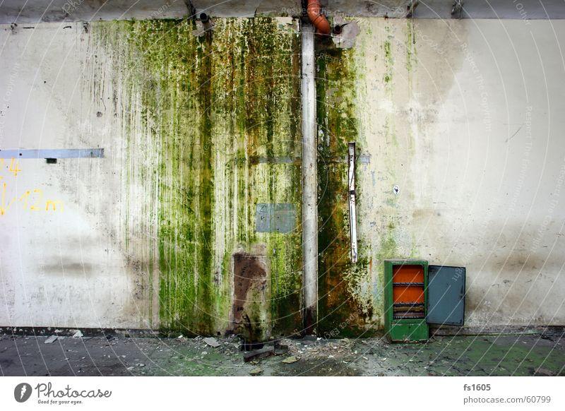 Industrial Trash Wasser grün Wand Regen dreckig Industriefotografie Müll feucht Algen Wasserrinne Regenrinne