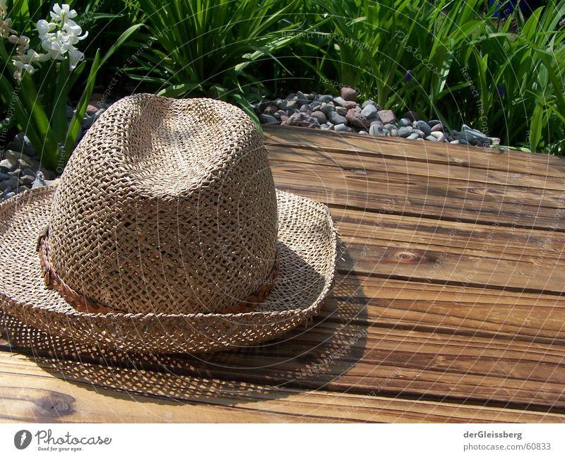 Hutwetter! Hatweather! Frieden Strohhut Pritsche friedliebend verträglich Frühling grün braun Holz Blume Licht Holzmehl springen Kopfbedeckung Grünfläche