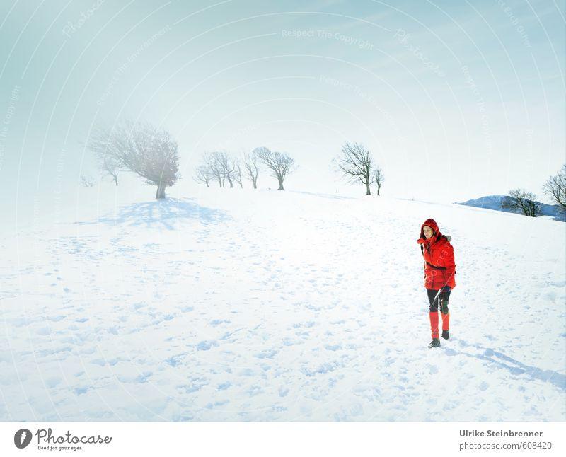 Black Forest Arctic Expedition Mensch Frau Himmel weiß Baum Einsamkeit rot ruhig Winter kalt Erwachsene Berge u. Gebirge Leben Schnee feminin gehen