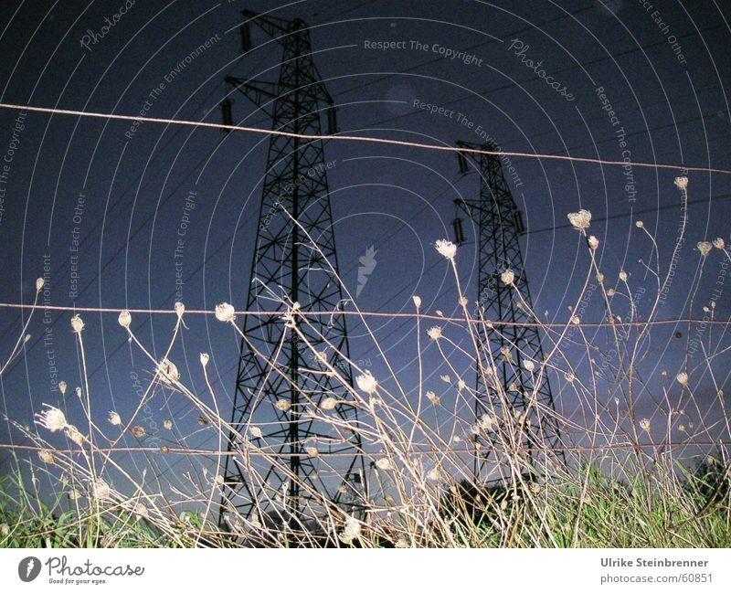 Hochspannung Wiese Kraft Feld Elektrizität Gewitter aufwärts Spannung Strommast Abenddämmerung Hochspannungsleitung Weidezaun