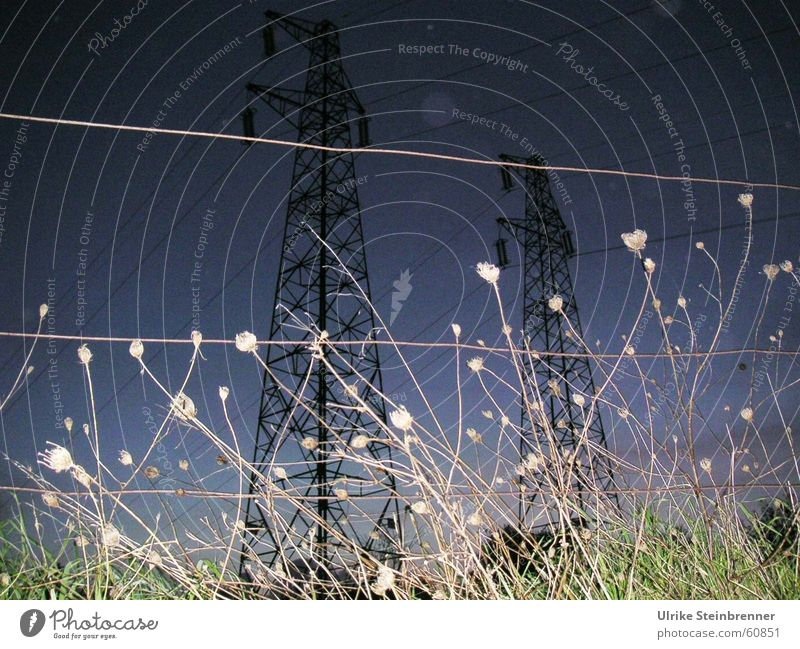 Hochspannungsmasten hinter Weidezaun bei Gewitter Farbfoto Außenaufnahme Abend Nacht Wiese Feld Kraft Strommast Abenddämmerung Elektrizität Spannung electricity