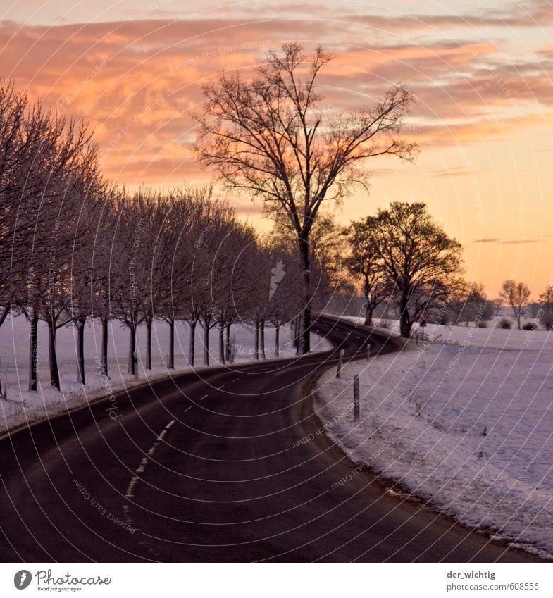 Straße am Morgen in den Sonnenaufgang Himmel Natur Baum Erholung Landschaft Winter Wald kalt Umwelt Schnee Horizont träumen Tourismus Wetter Eis