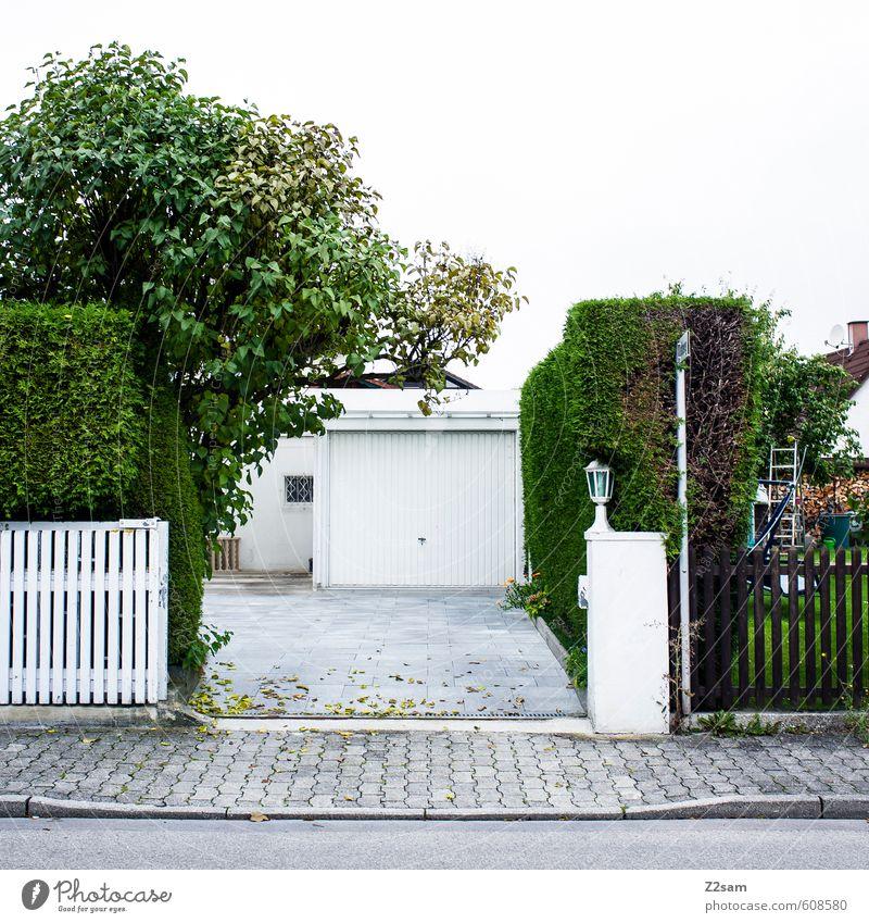 spiesser Umwelt Natur Baum Sträucher Dorf Kleinstadt Haus Gebäude Architektur Verkehrswege Straße kalt modern Sauberkeit Stadt ästhetisch Design elegant Idylle