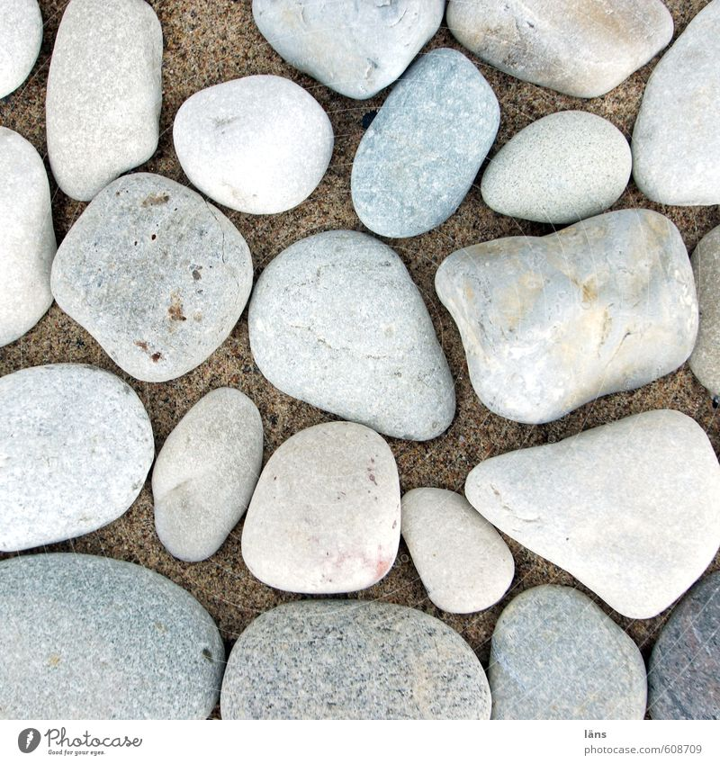 Du suchst das Meer Natur Strand Umwelt Küste Stein Sand liegen Ostsee steinig Strandgut