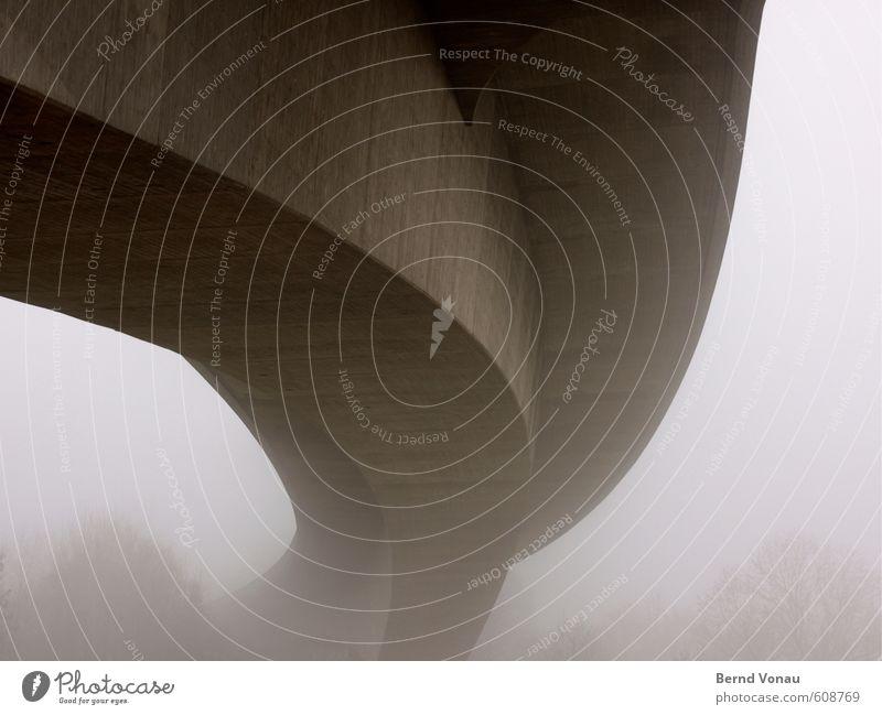 Übermacht Winter Pflanze Baum Straße Brücke Respekt grau Beton Nebel diffus Bogen Kurve unten Größe gewaltig Ecke Flussufer Überqueren weiß schwarz Macht