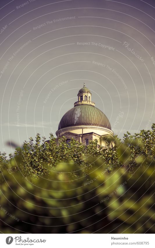 Blick über die Hecke Ferien & Urlaub & Reisen Stadt Herbst Architektur Garten Tourismus Ausflug Bauwerk München Stadtzentrum Sehenswürdigkeit Hauptstadt
