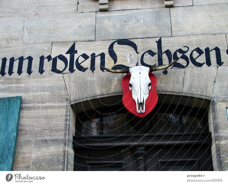 ...um roten Ochsen alt blau rot Haus grau Stein Tür Gastronomie Skelett Fensterladen Kneipe Sandstein Eingangstür Eingangstor zweiflügelig