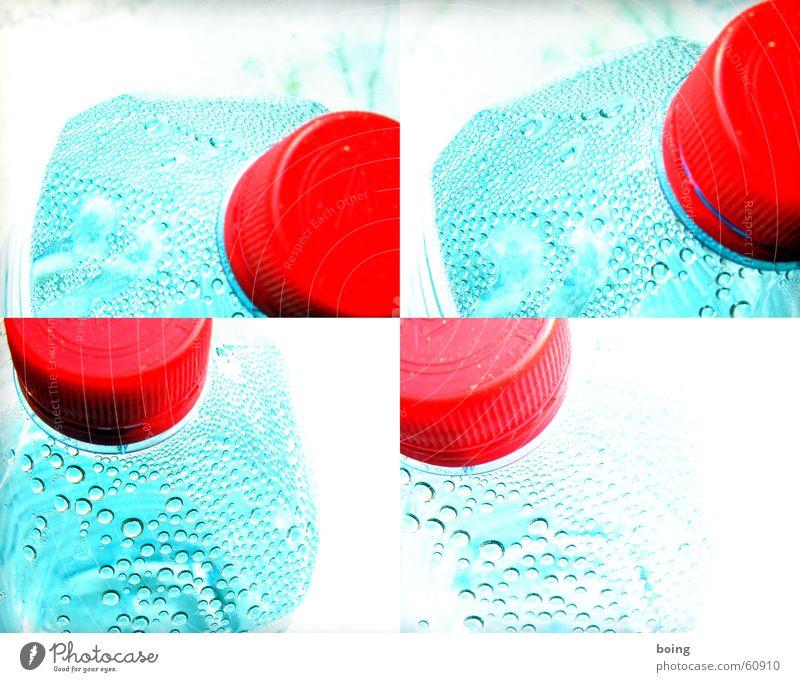 She's fresh. fresh - exciting. she's so exciting to me! Wasser Trinkwasser Durst Wassertropfen Tropfen Flasche Glasbehälter Kunststoff Mineralwasser