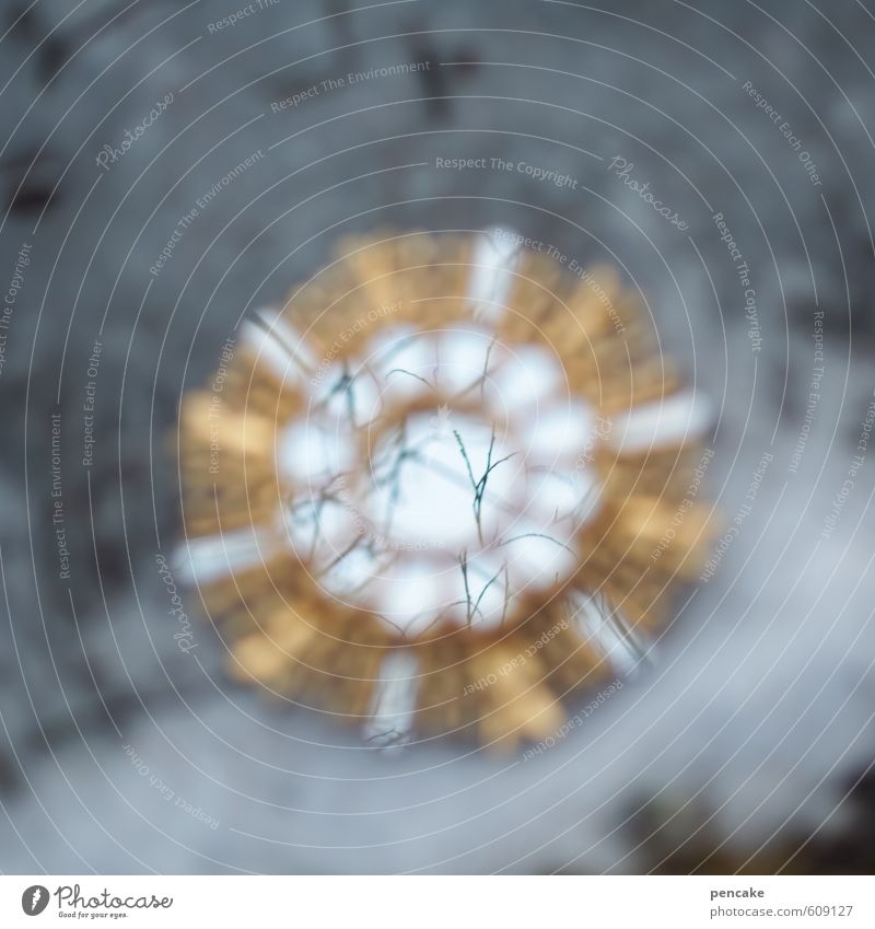 stern   verzaubert Natur Sonne Winter Schnee Eis Erde Gold Ast Stern (Symbol) Zeichen Urelemente Frost Spiegel Teich Märchen Zauberei u. Magie
