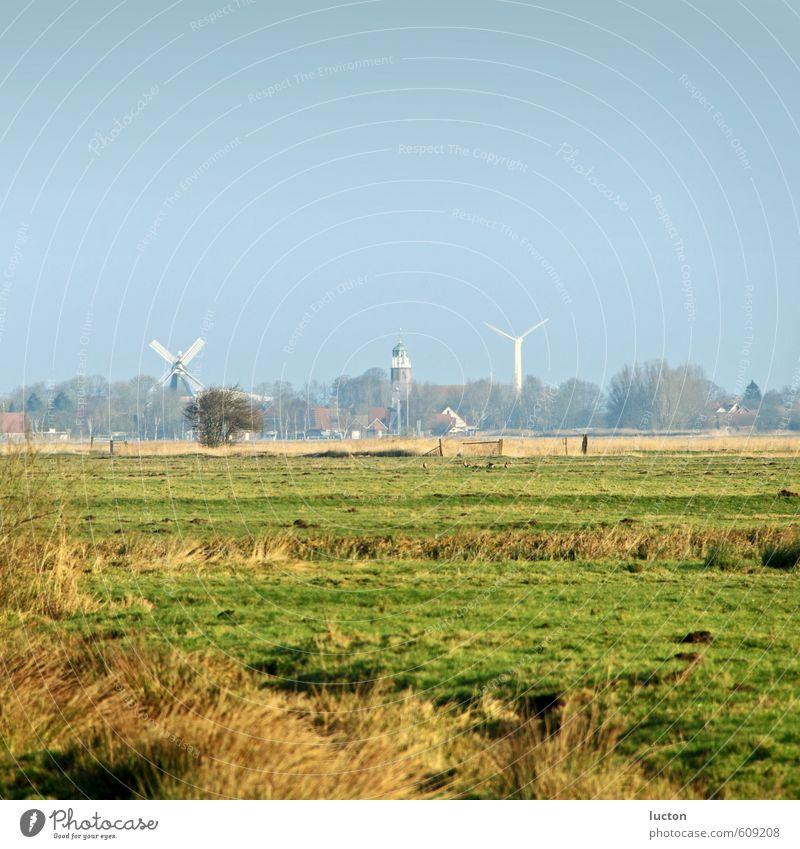 Ostfriesland Landwirtschaft Forstwirtschaft Windkraftanlage Umwelt Natur Landschaft Himmel Sonne Winter Schönes Wetter Gras Wiese Feld Nordsee Schwemmland Dorf