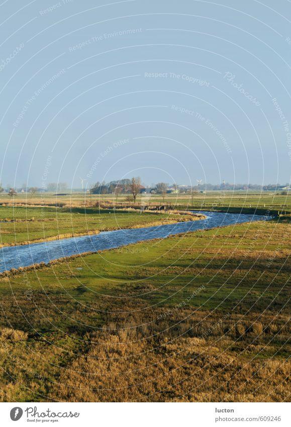 Deichlandschaft Windkraftanlage Landschaft Luft Wasser Himmel Sonne Winter Schönes Wetter Baum Gras Feld Küste Flussufer Salzwiese Fischerdorf Menschenleer Haus