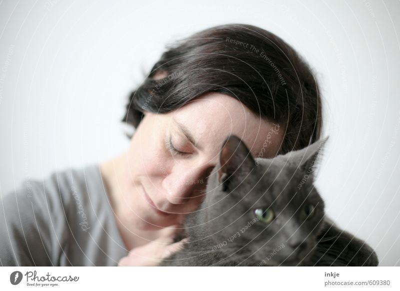 kurz ankuscheln Katze Mensch Frau weiß Tier Gesicht Erwachsene Leben Gefühle grau träumen Zusammensein Freizeit & Hobby Lifestyle genießen weich