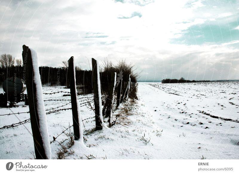 Winterimpression_III kalt Zaun Holz weiß Wolken Baum Schnee Himmel Pfosten Kontrast Beleuchtung Landschaft Natur