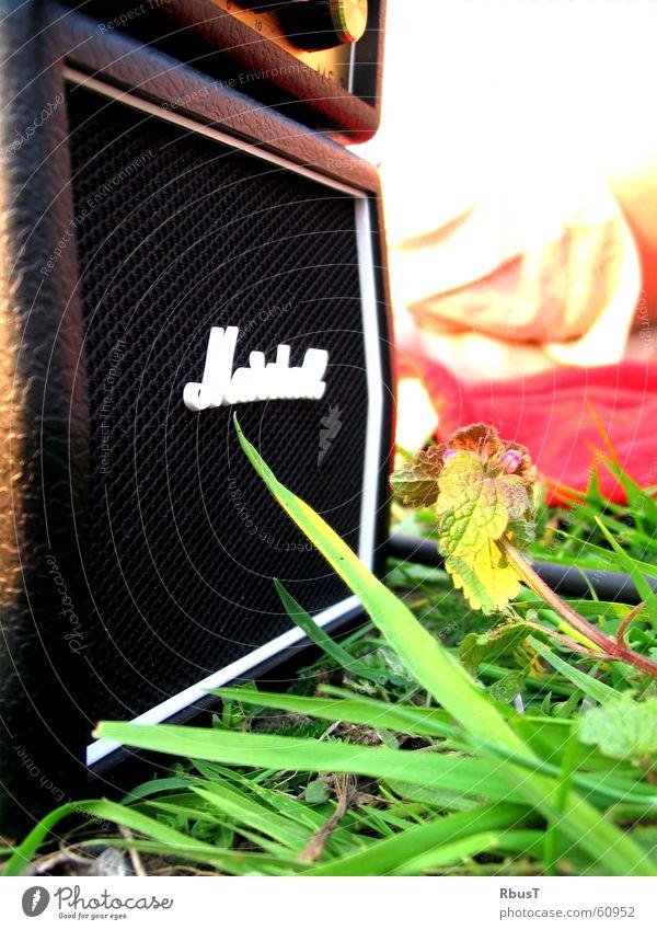 Miniverstärker grün Pflanze Wiese Gras Frühling Musik Gitarre Tiefenschärfe Lautsprecher Lust Musikinstrument Klang laut Laune Verstärker Membran