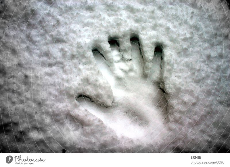 Winterimpression_II Hand weiß kalt Schnee Stil Finger Daumen Abdruck Fingerabdruck