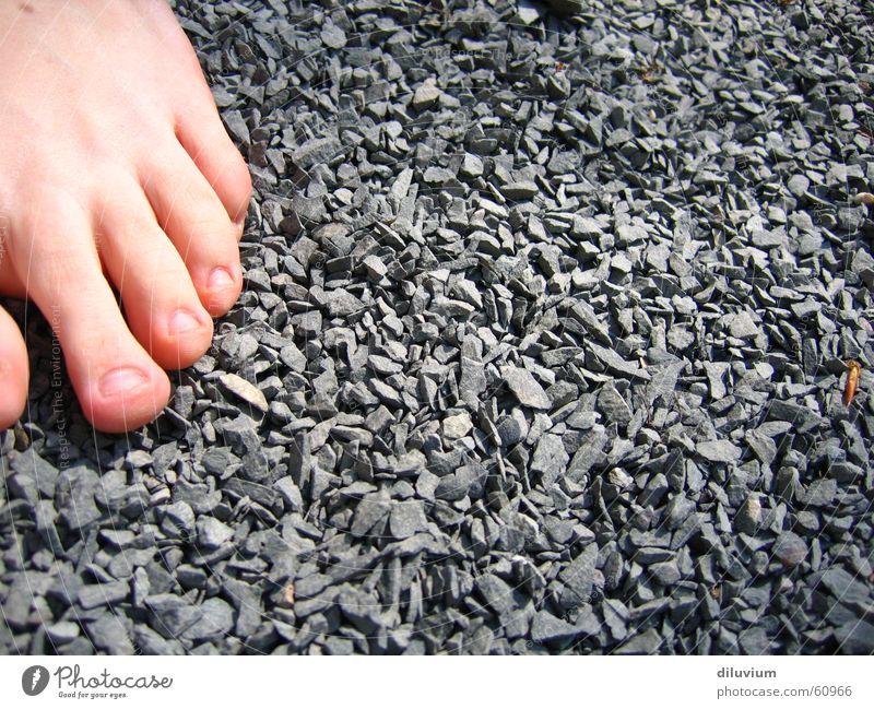 Pfad der Sinne Ecke Zehen Barfuß Physik Gefühle Sinnesorgane Stein eckig Fuß Wärme drausse