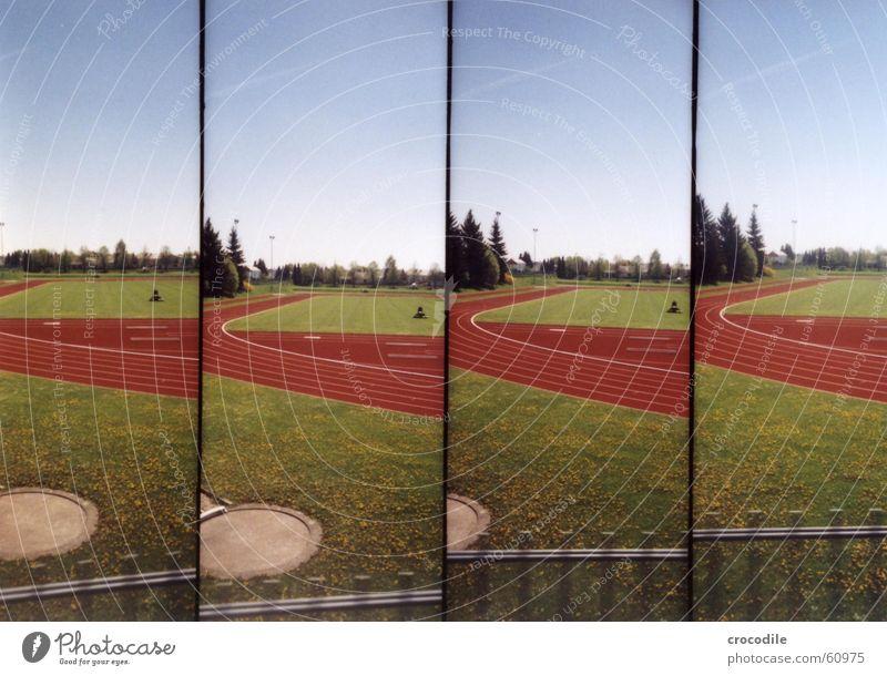 RotesRund Sportplatz rot rund Gras grün Schweiß Baum Wiese Rasenmäher Lomografie Eisenbahn laufe anstrenung Fußball Außenaufnahme