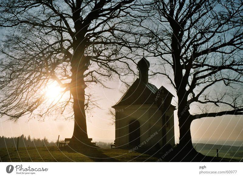 Maria Dank Kapelle in Degerndorf Baum Sonne Stimmung