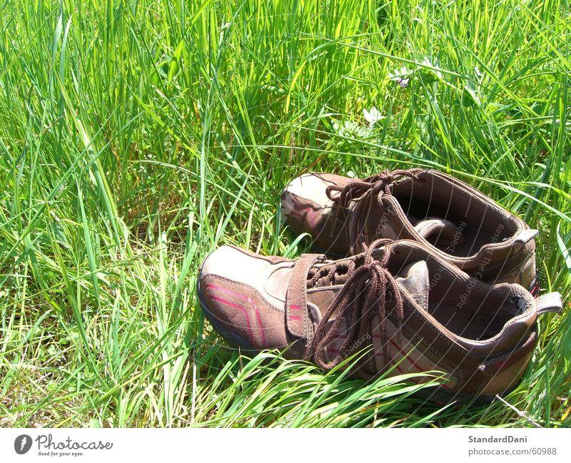 Back2Roots Natur grün Sommer ruhig Einsamkeit Erholung Wiese Gras Schuhe Bekleidung Rasen Sportrasen Weide resignieren schweigen lüften
