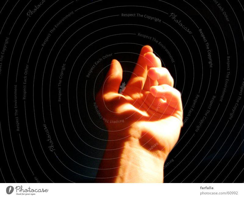Geigengriff Hand Musik Finger Griff