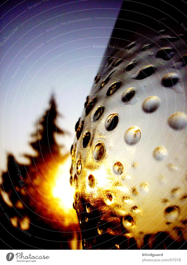 Leer-Gut leer Pfandflasche Recycling Sonnenuntergang Wasserflasche Umweltschutz empty Flasche bottle leergut sun